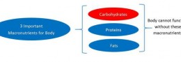 Simple Vs Complex Carbohydrates And When To Consume Them