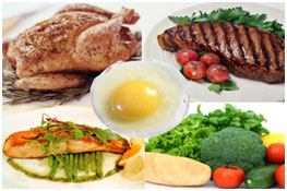 food that contain high amount of protein