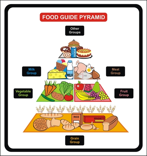 1 1 outline the nutritional requirements of a healthy diet for children and young people Benefits of healthy eating appendix 3 as part making sure children get access to healthy food (fruit scheme, milk etc) children are more aware of what constitutes a healthy diet and lifestyle the.
